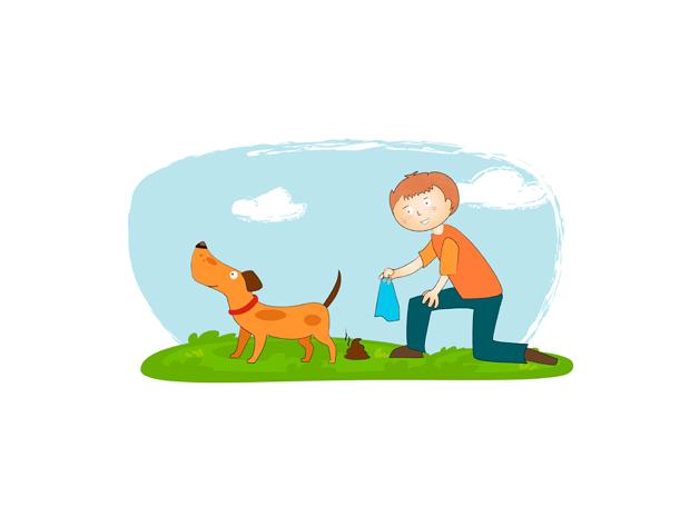 03-estima-gos
