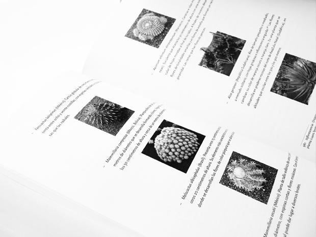 04-tesis-natura-horitzontal