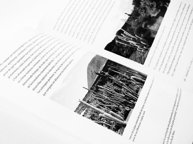 06-tesis-natura-horitzontal