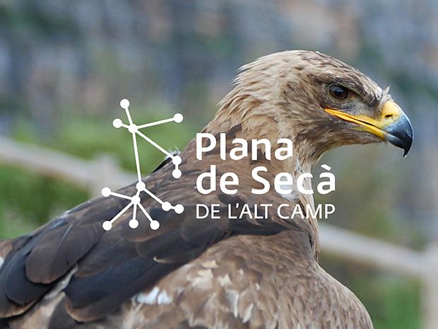 03-plana-de-seca-unicum-2019
